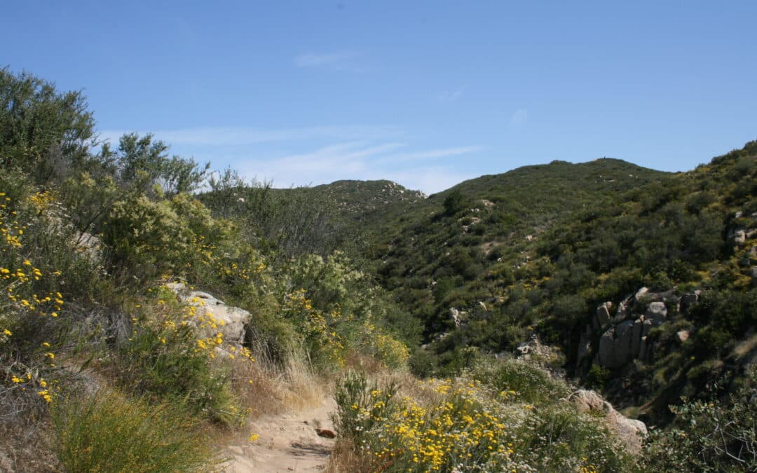 View from San Juan Loop Trail Santa Ana Mountain